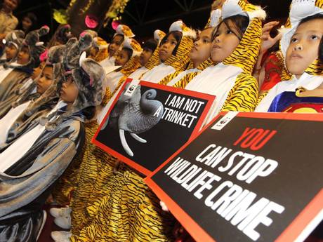 Thai children dressed as elephants and tigers at the Cites conference in Bangkok. Photo Credit: independent.co.uk