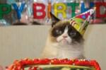 grumpy cat tardar sauce happy birthday