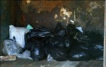 dumpster of peta's euthanized dogs and cats
