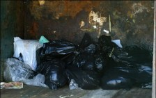 """A supermarket dumpster full of garbage bags. When police officers looked inside, they found the bodies of dead animals -- animals killed by PETA. PETA described these animals as """"adorable"""" and """"perfect."""" A veterinarian who naively gave PETA some of the animals, thinking they would find them homes, and examined the dead bodies of others, testified that they were """"healthy"""" and """"adoptable."""" Photo Credit: whypetakills.org"""