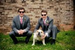 dog bulldog with grooms men at wedding ceremony