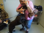 dog reunited with family after oklahoma tornado