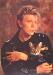 david bowie and cat