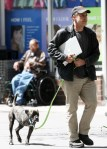 Jon stewart walks three legged dog