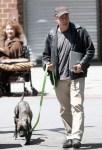 jon stewart walks dog