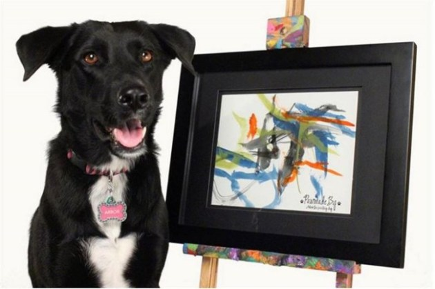 Las Vegas rescue dog, Arbor, paints once again, this time the proceeds will benefit victims of the Oklahoma City tornado. Photo Credit: Facebook