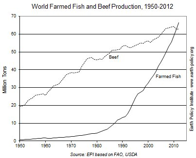 farmed fish versus beef production market