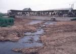 Farm Waste