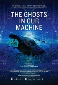 Photo Credit: The Ghosts In Our Machine