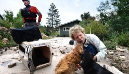 Suzanne Sophocles hugs her dogs after they were rescued from her flooded home on September 13 in Boulder. Thousands of people stranded by the flood waters in Colorado were finally able to come down by trucks and helicopters, two days after seemingly endless rain turned normally scenic rivers and creeks into coffee-colored rapids that wrecked scores of roads and wiped out neighborhoods. Photo Credit: Jeremy Papasso, The Daily Camera