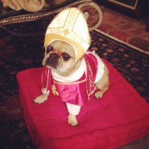 Beaureguard in a Pope costume!