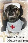 sister molly nun dog costume