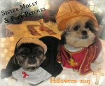 dogs as pope and nun halloween costumes