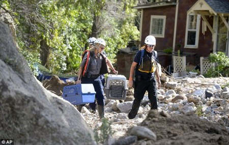 A Boulder County Animal Control officer and AHA workers rescue a cat from a destroyed home as the flood water recedes. Photo Credit: AP