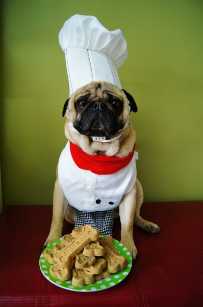 Chef-Pugardee!