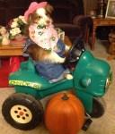 dog halloween costume pumpkin tractor