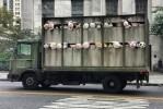 banksy meat truck art installation
