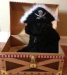 pirate dog in treasure chest halloween costume