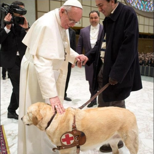 Pope blesses reporters dog. AFP/Getty.