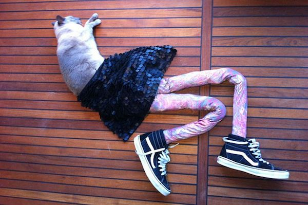 Blue socks? Check. Blue undies? Check. Cat nap? Check. Photo credit: dailylife.com.au