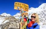 rupee first dog to climb mount everest