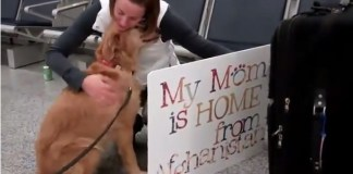 This soldier returns from Afghanistan to be greeted by her faithful dog. Photo Credit: http://www.youtube.com/watch?v=k0zMzfegs5s