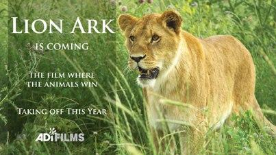 Tigers, Circus, Bolivia, NCAAP, Animal Cruelty, Rescue Circus Animals