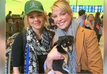 Katherine Heigl, Ali Fedotowsky, Sochi Strays, Olympics, Sochi, Russia, Stray Dogs