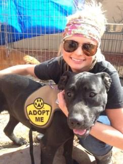 miranda lambert, muttnation foundation, puppy, puppies, dogs, pets, adoption, dog adoption, country music, celebrities, country music star