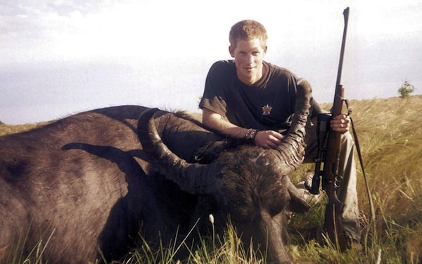 Prince Harry, Royal Family, England, Poaching, Water Buffalo, Animal Cruelty, Hunting