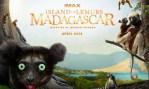 Narrated by Morgan Freeman, Island of Lemurs: Madagascar explores lemur life.