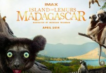 Narrated by Morgan Freeman, Island of Lemurs: Madagascar explores lemur life.