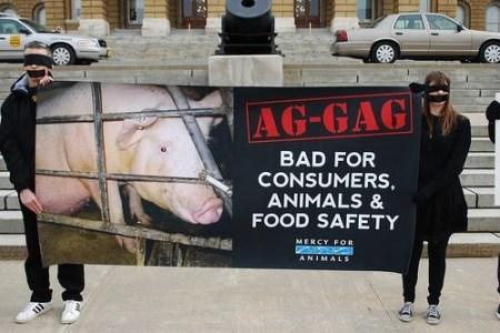 (ANIMAL ABUSE/AG-GAG LAWS)