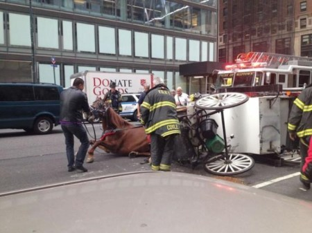 A carriage horse named Chris was spooked near Columbus Circle in Manhattan September 2013 and was pinned under his overturned carriage./Photo credit: constant contact.com