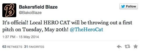 Hero Cat Bakersfield