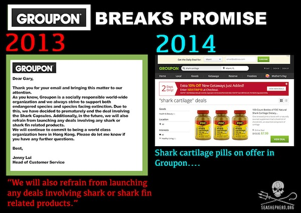 Groupon, Shark, Shark Products, Shark Cartilage, Animal Welfare, Sea Shepherd