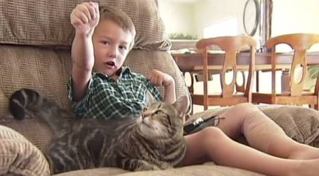 "Tara the ""Hero Cat"" saves four year old Jeremy from dog attack outside their family's home in Bakersfield, CA./Photo credit: independent.co.uk"