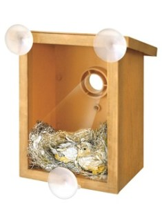 The MySpy Birdhouse not only helps bird-proof your windows, but also allows you to keep a watch on birds through a two way mirror.