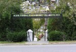 Many exotic pets, including a lion cub, rest at the Hartsdale Pet Cemetery. Photo credit: Wikipedia