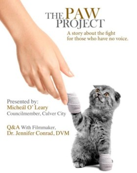 """The Paw Project"" is a documentary that explores the harms of declawing your cat. Photo credit: catster.com"