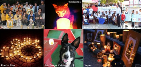 People around the globe participate in candle-lighting ceremonies to honor orphaned pets. Photo credit: Animalcenter.org