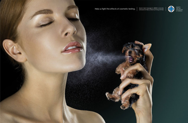 Help us fight the effects of cosmetic testing. Photo credit: Society For The Protection Of Animals
