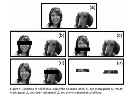 """Panel """"a"""" is an example of no-mask, """"b"""" is eye-mask, """"c"""" is mouth-mask, """"d"""" is dog-eye-mask, and """"e"""" is eye-only. Photo credit: Sadahiko Nakajima"""