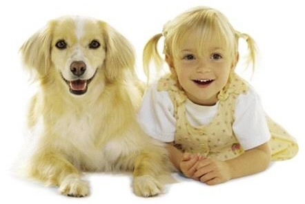It is not uncommon for pet guardians to resemble their pet dog. Photo credit: 67notout.com