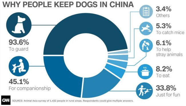Why people have dogs in China -- yulin dog meat festival divides country