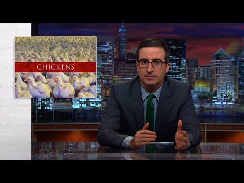 john oliver last week tonight show chickens segment