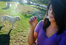 Flavoring agents used in e-cigarettes could entice pets. Photo credit: CBS News
