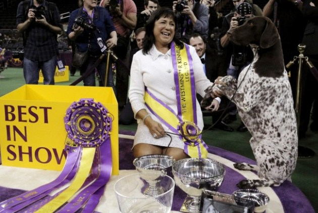 Handler Valerie Nunez Atkinson poses with CJ, a German shorthaired pointer from the Sporting Group, after they won Best in Show at the Westminster Kennel Club Dog show at Madison Square Garden in New York. Photo Credit: Brendan McDermid via Reuters