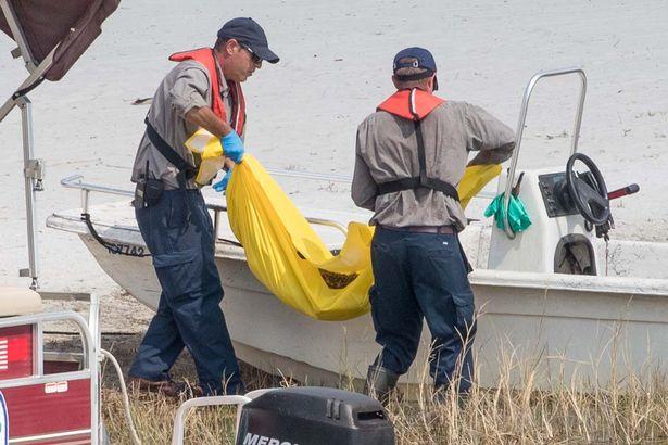 Desperate wildlife officials move an alligator into a boat on the Seven Seas Lagoon. Photo Credit: James Breeden via Daily Mirror