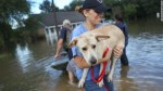 Ann Chapman from the Louisiana State Animal Response Team carries a dog she helped rescue from floods in Baton Rouge